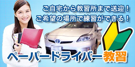 paper_driver